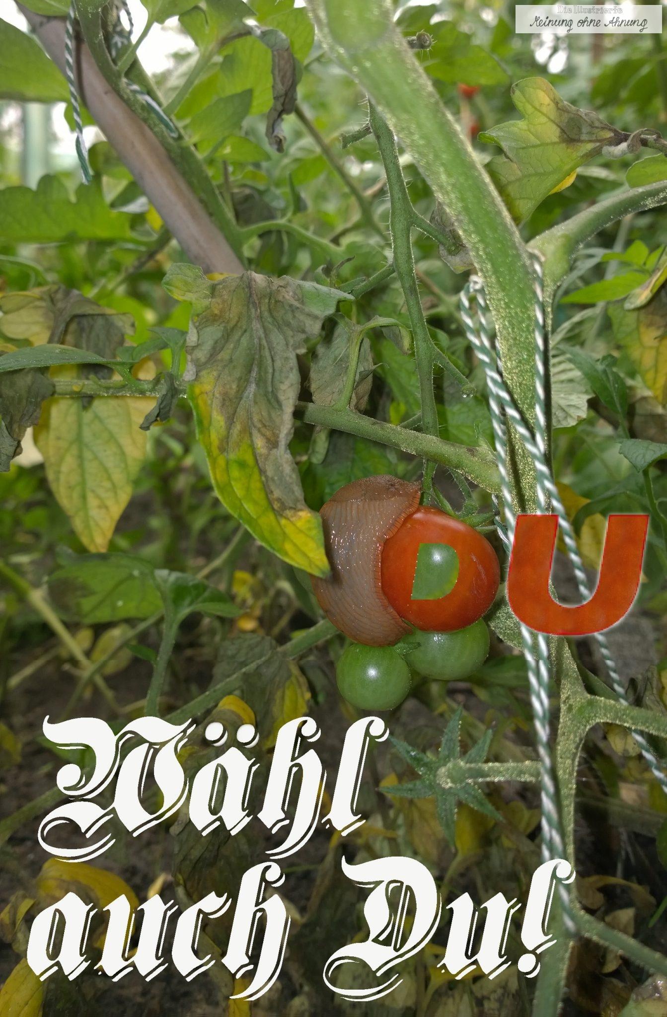Wähl-auch-du-CDU2
